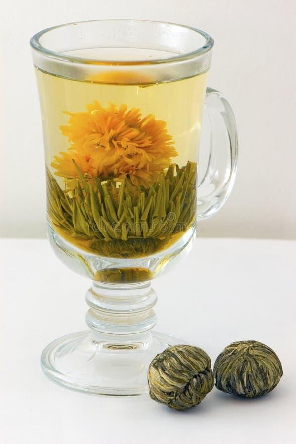 зеленый чай сфер стоковые изображения rf