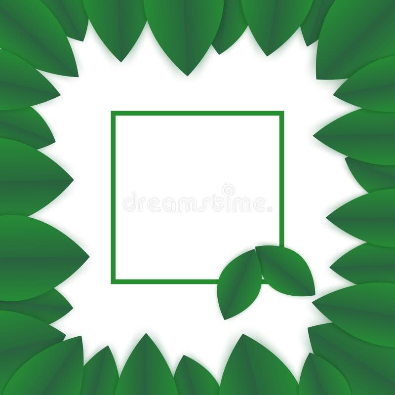 Зеленый шаблон знамени рамки лепестков иллюстрация вектора