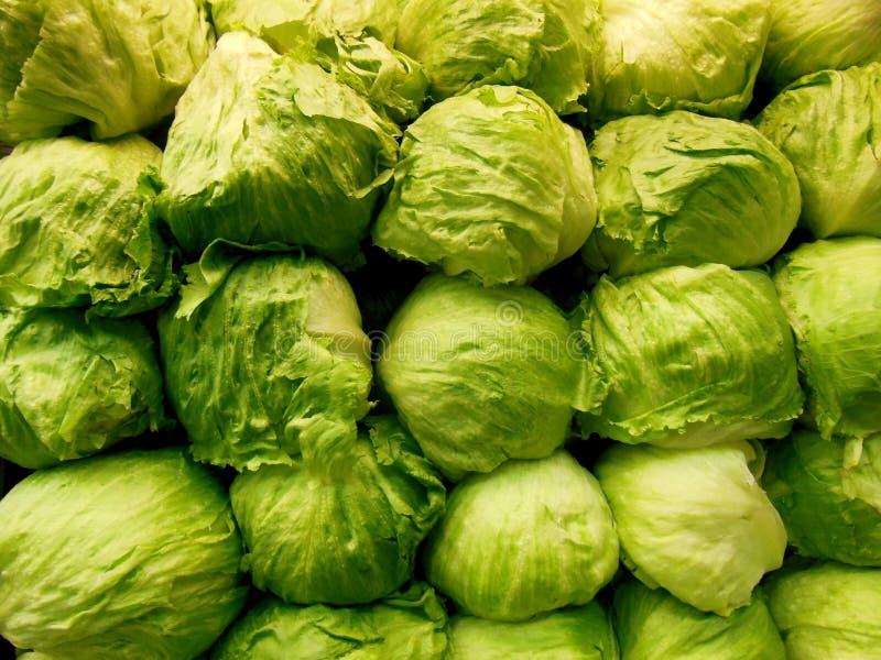 Зеленый штабелированный салат айсберга стоковые изображения rf