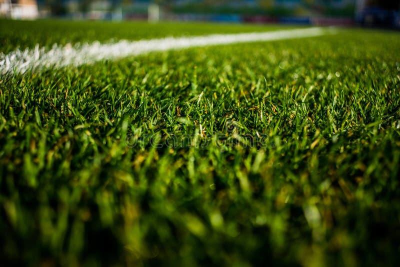 Зеленый яркий красочный тангаж травы stafium футбола, конца вверх с красивым bokeh стоковое фото