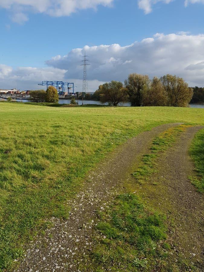 Зеленый Rhein стоковое изображение