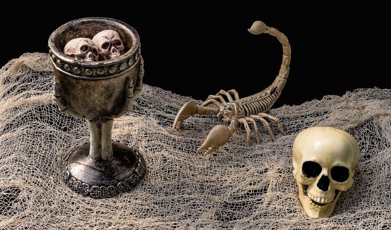 Зелье ` s ведьмы окруженное скелетом и черепом скорпиона стоковое фото rf