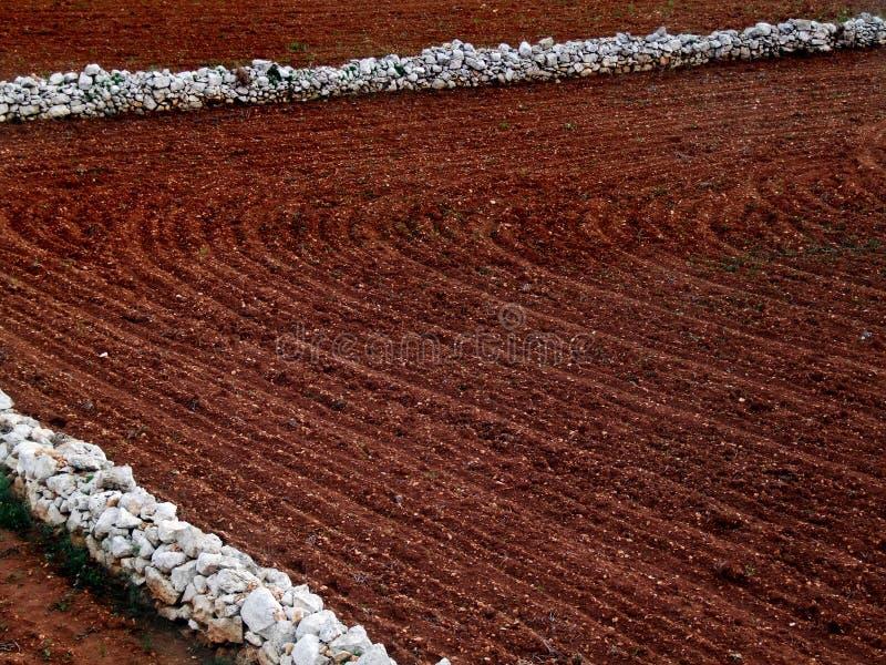 земледелие стоковое изображение rf