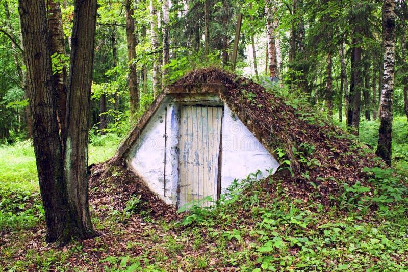 Землянка в глухом летнем лесу/Dugout i den djupa sommarskogen royaltyfri foto