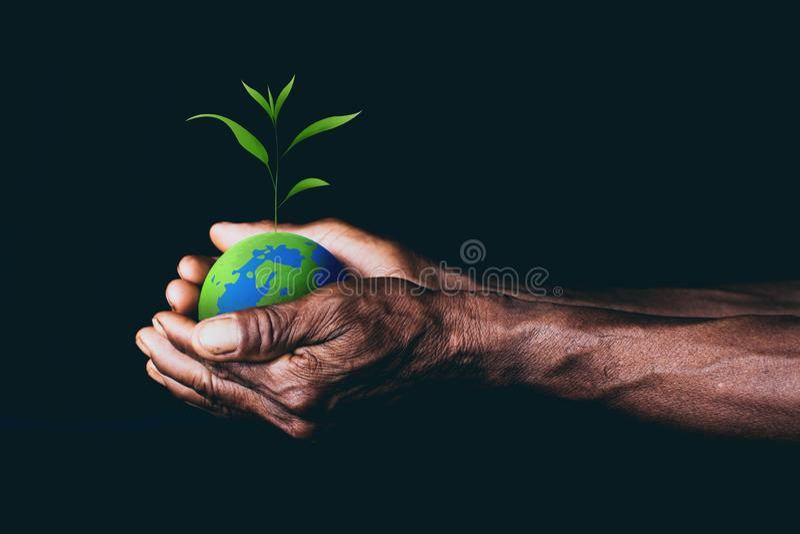 Земля в руках стоковая фотография