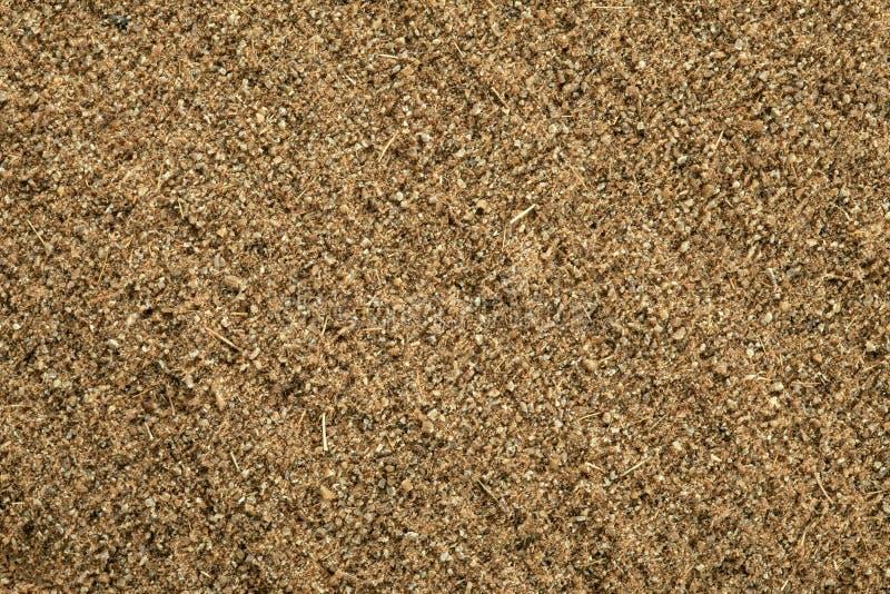 земля тимона предпосылки стоковая фотография