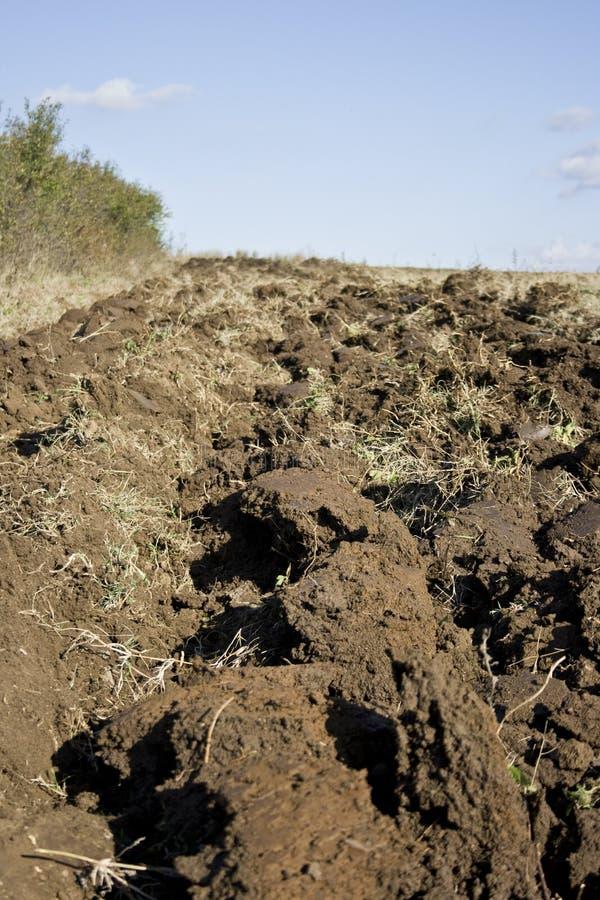 Download земля стоковое изображение. изображение насчитывающей aiders - 6858481