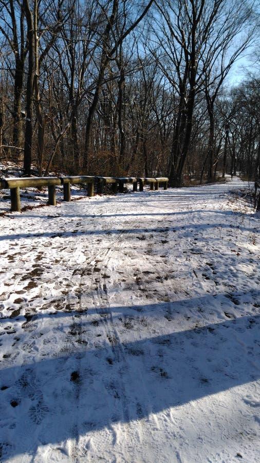 Земля Snowy стоковое изображение
