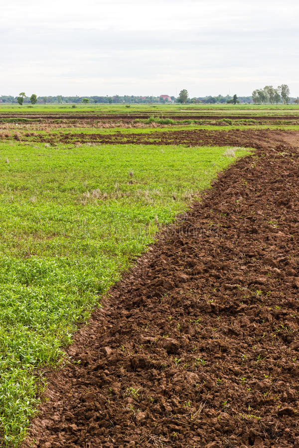Землепашество почвы к выгону стоковая фотография rf