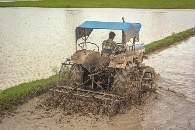 Земледелие Индия стоковое изображение