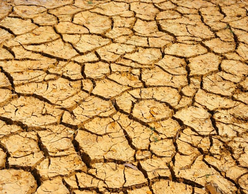 Земля засухи, изменение климата, горячее лето стоковые фотографии rf