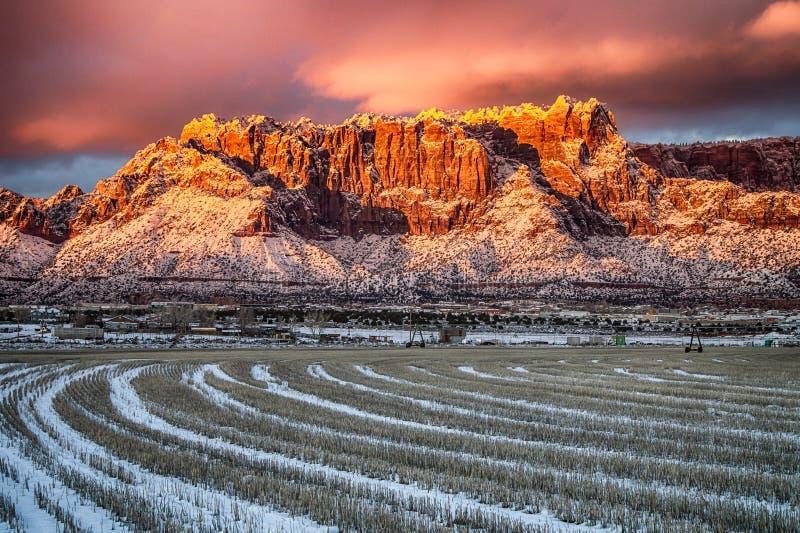 Земля зимы пустыни стоковые изображения rf