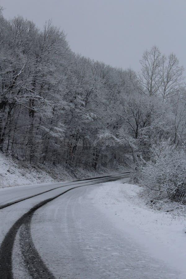 Земля интереса зимы стоковая фотография rf