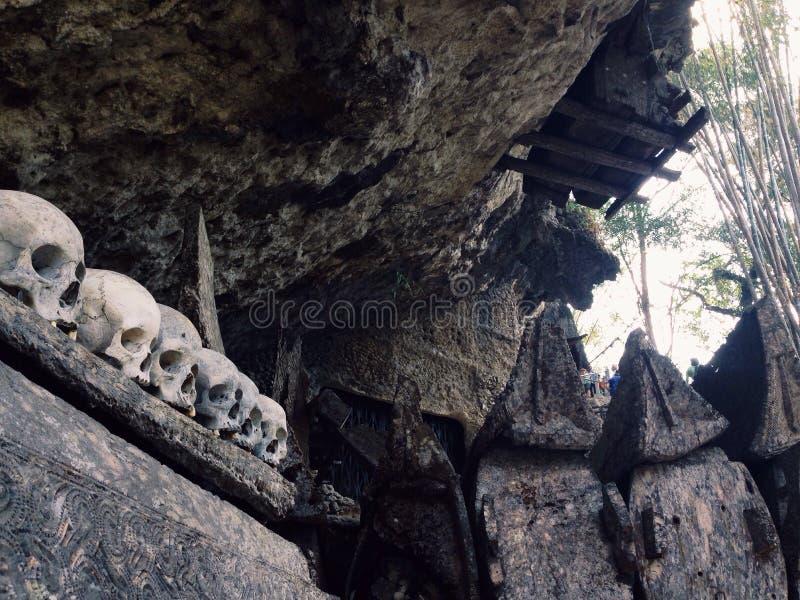 Земля Toraja, старые могилы стоковые изображения