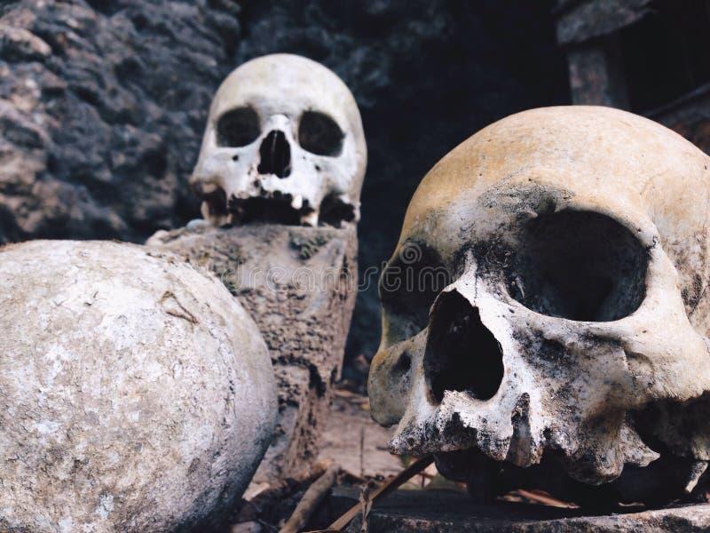Земля Toraja, старые могилы стоковое фото rf