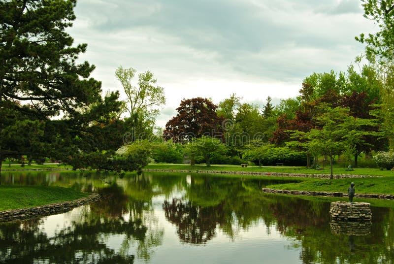 зеркало лужайки озера пущи стоковые изображения rf