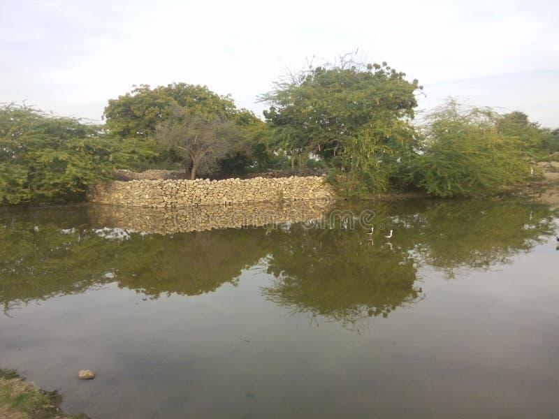 Зеркало реки стоковая фотография rf