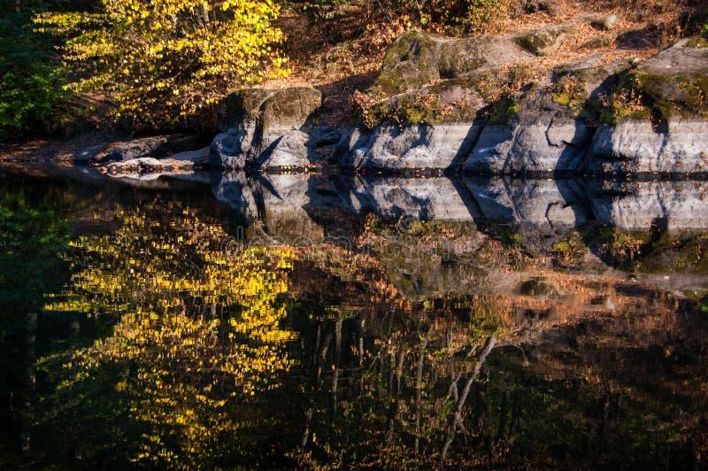 Зеркальноподобное река стоковая фотография
