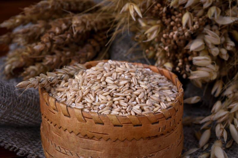 Зерна всех овсов в плетеной коробке и ушах различных хлопьев стоковое фото rf