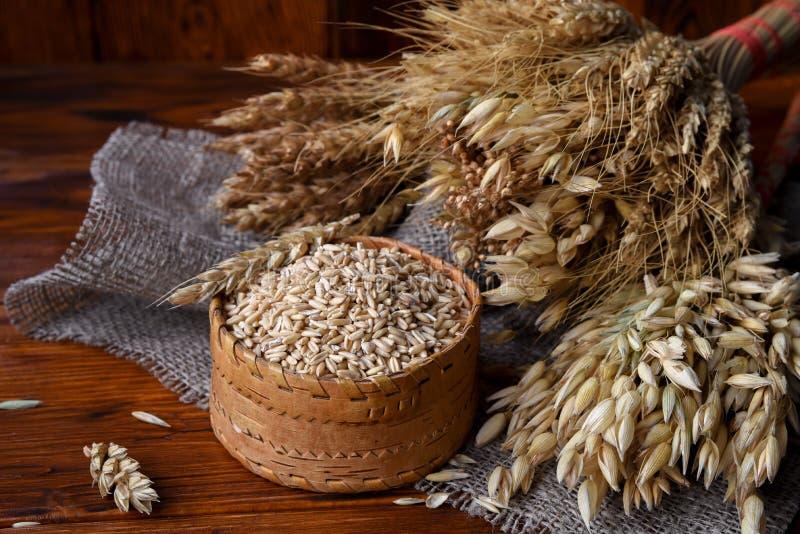 Зерна всех овсов в плетеной коробке и ушах различных хлопьев стоковая фотография rf