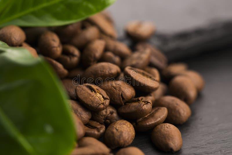 Зерна и листья кофе стоковая фотография