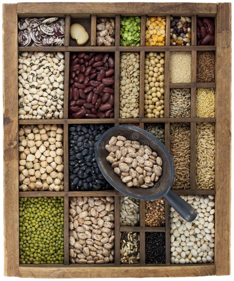 зерна коробки фасолей черпают сбор винограда стоковое изображение rf