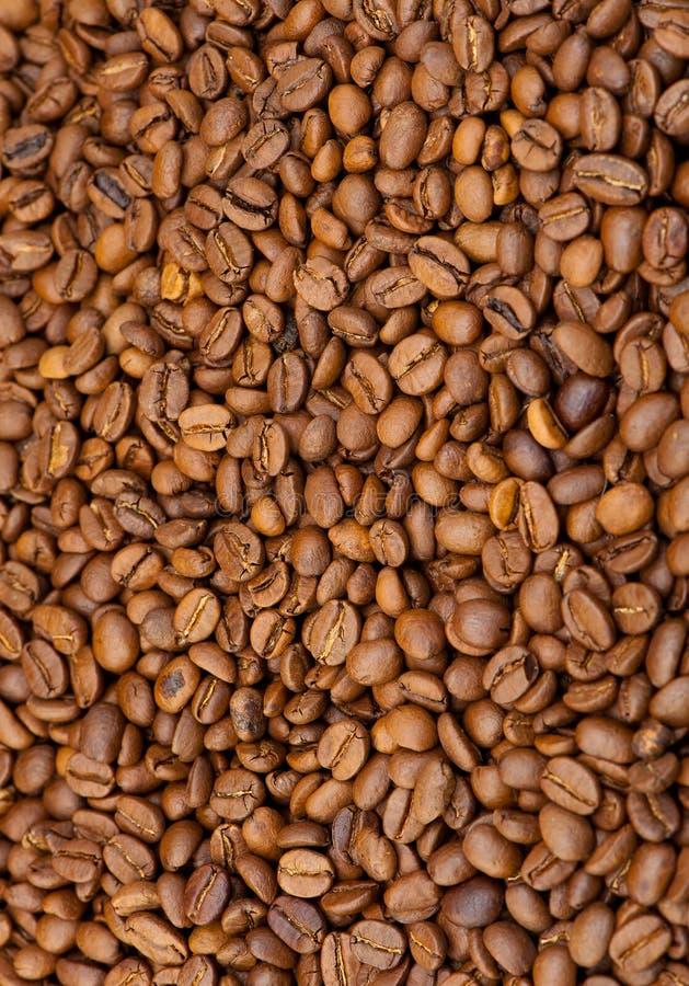 зерна кофе предпосылки стоковое изображение rf
