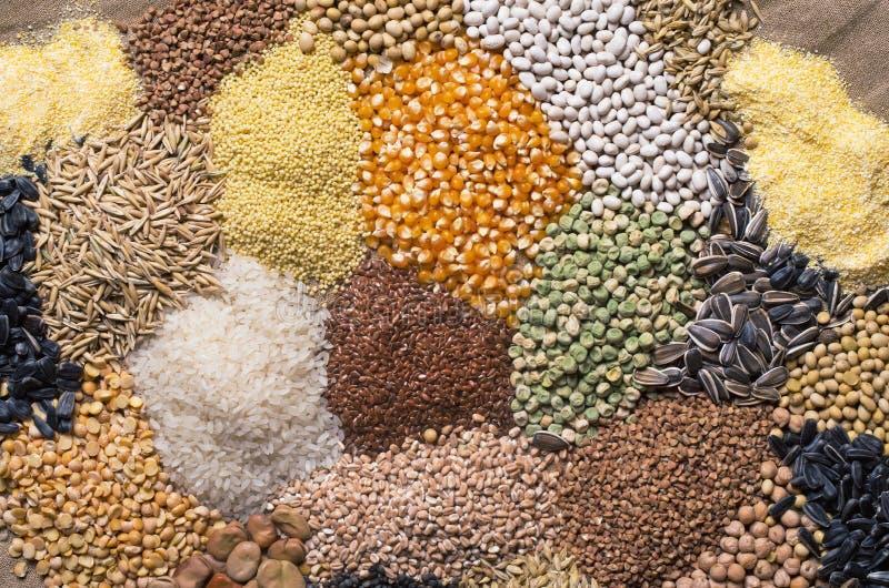 Зерна хлопьев, семена, фасоли стоковая фотография