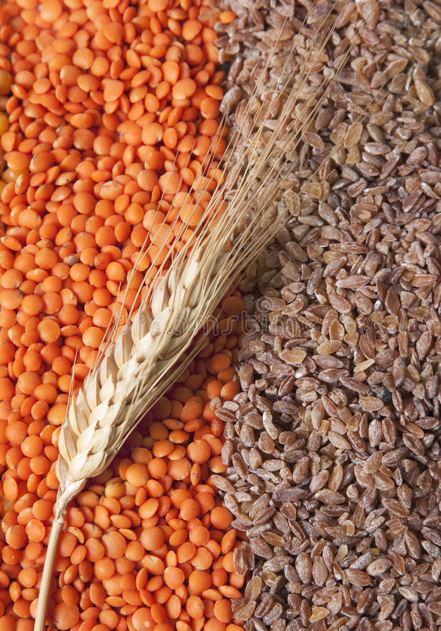 зерна стоковое изображение rf