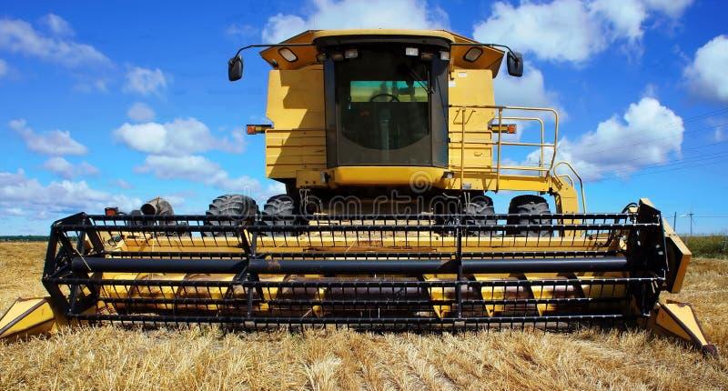 Зернокомбайн на поле стоковые фотографии rf