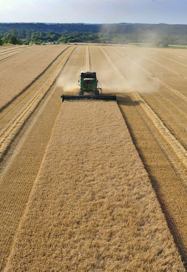 зернокомбайн пшеницу стоковое изображение rf