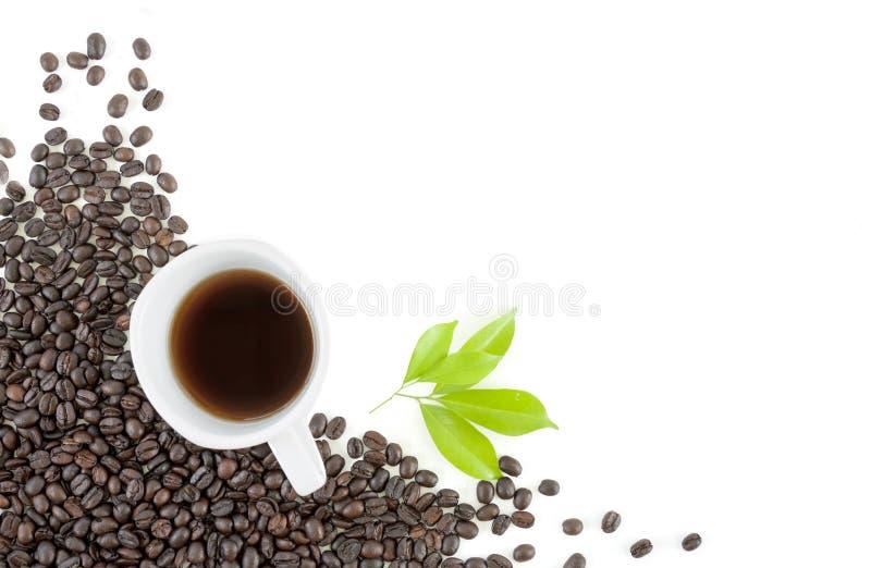 Зерно кофе, чашка на белой предпосылке стоковое изображение rf