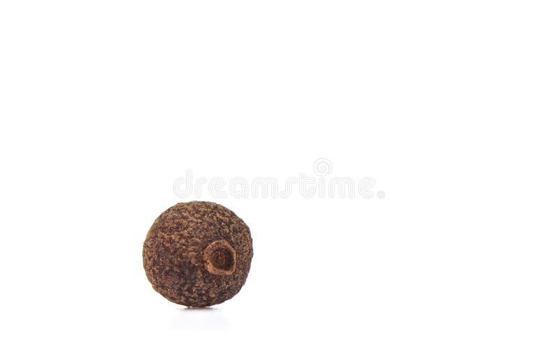 Зерно allspice изолированное на белой предпосылке Ямайский allspice E стоковые изображения rf