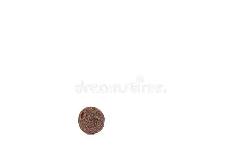 Зерно allspice изолированное на белой предпосылке Ямайский allspice стоковое изображение rf