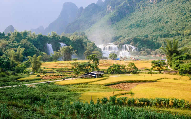 Зерно Ban Gioc Waterfall стоковые фото
