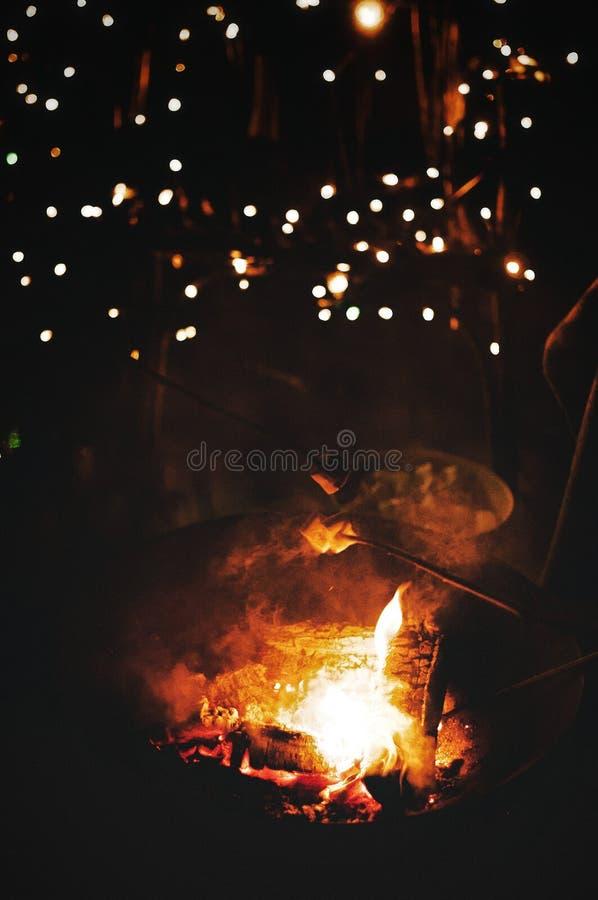 Зефиры приготовления на гриле зимний день стоковое фото