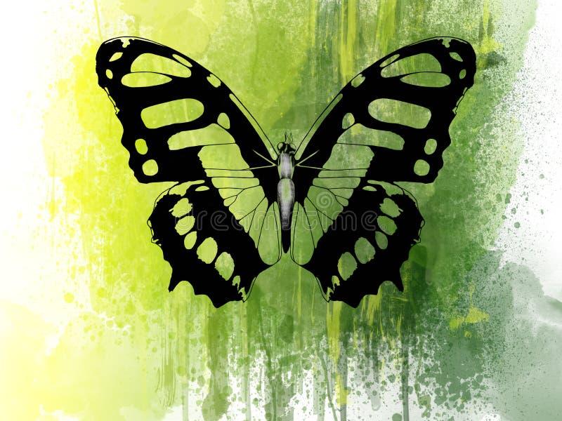 Зеленая бабочка иллюстрация штока