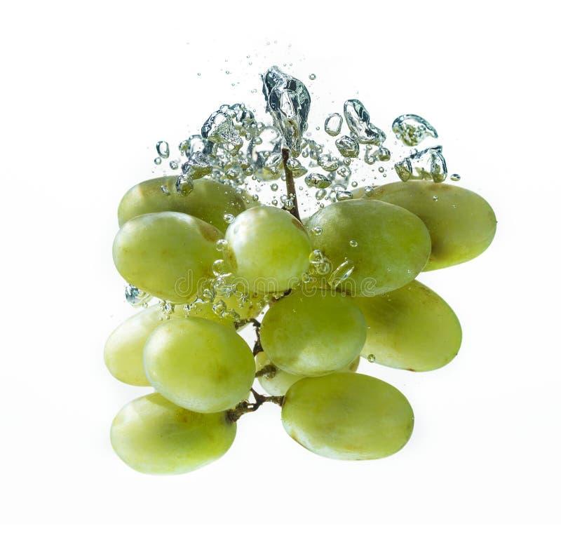 Зеленая виноградина стоковое изображение