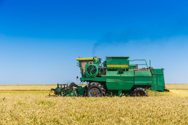 Зеленая машина сбора работает в поле сои стоковая фотография