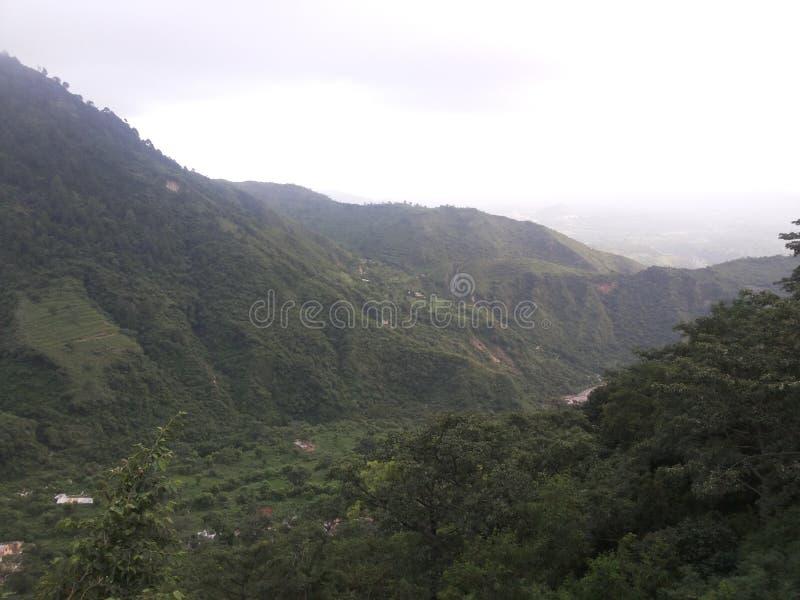 зеленая долина горы стоковые фото