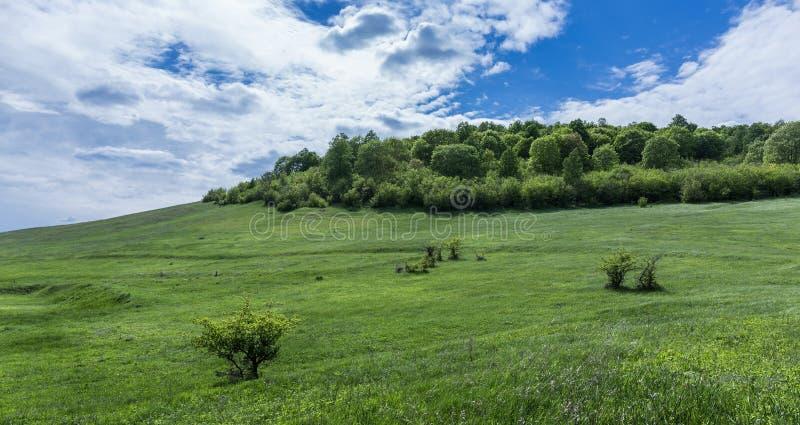 зеленая долина стоковые изображения rf