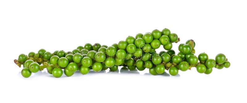 Зеленая перчинка изолированная на белой предпосылке стоковые фотографии rf