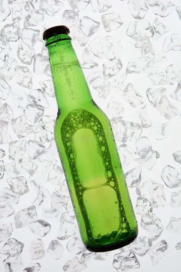 Зеленая пивная бутылка подсвеченная на льде стоковые изображения