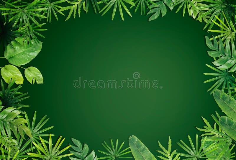 Зеленая предпосылка границы лист стоковое изображение