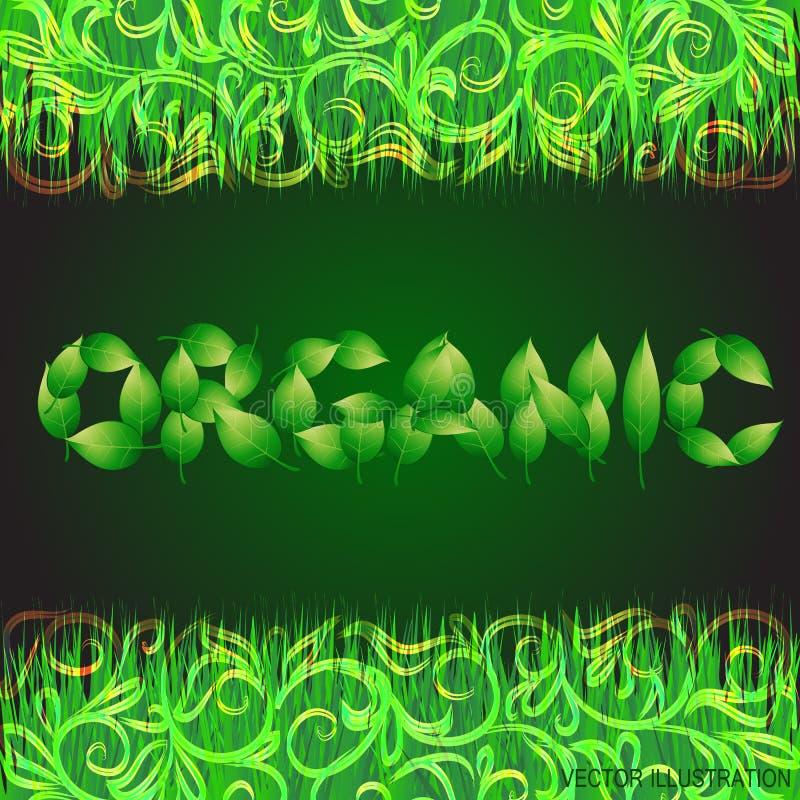 Зеленая предпосылка с текстом сделанным от листьев органическим Иллюстрация с вегетативной границей трав также вектор иллюстрации иллюстрация штока