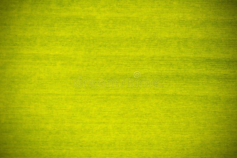 Зеленая предпосылка текстуры лист банана стоковые фото