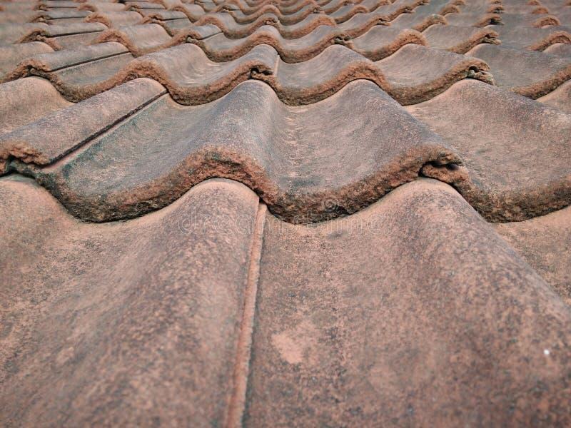 Зеленая плитка крыши стоковое фото rf