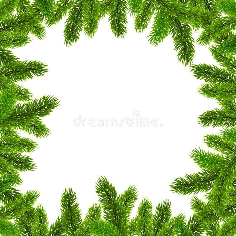 Зеленая рамка вектора ветвей рождественской елки бесплатная иллюстрация