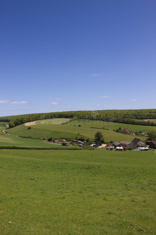 Зеленая сельская местность стоковые изображения