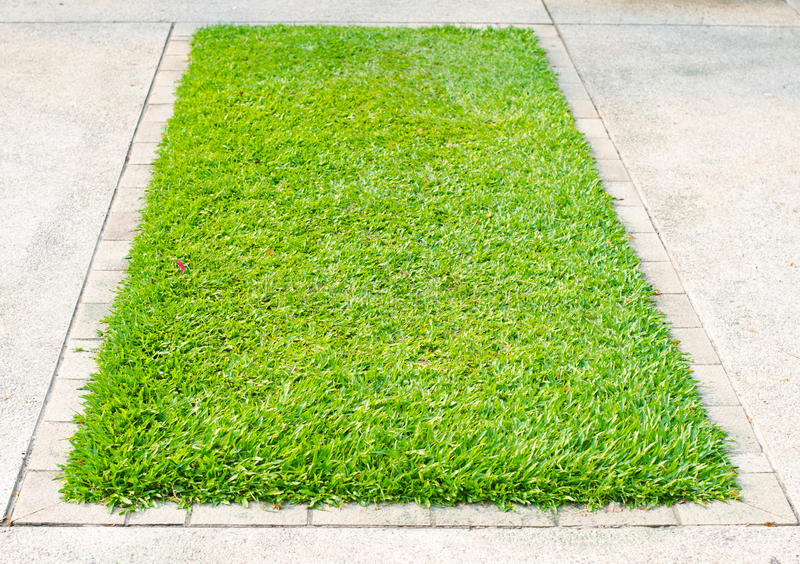Зеленая трава на квадратной бетонной плите стоковая фотография rf